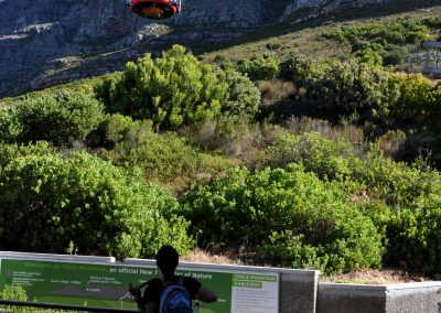 table-mountian-cableway-amy-2000px
