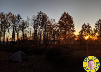 Campsite above Pagosa Springs