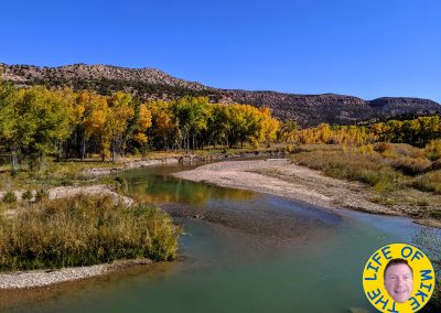 Fall colors along the Dolores River